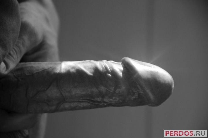 Большой пенис