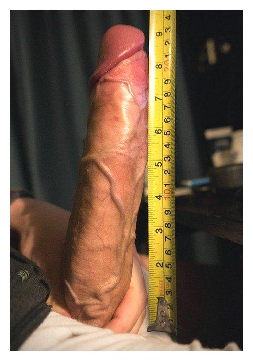 Член больше 20 сантиметров - редкость на сегодня