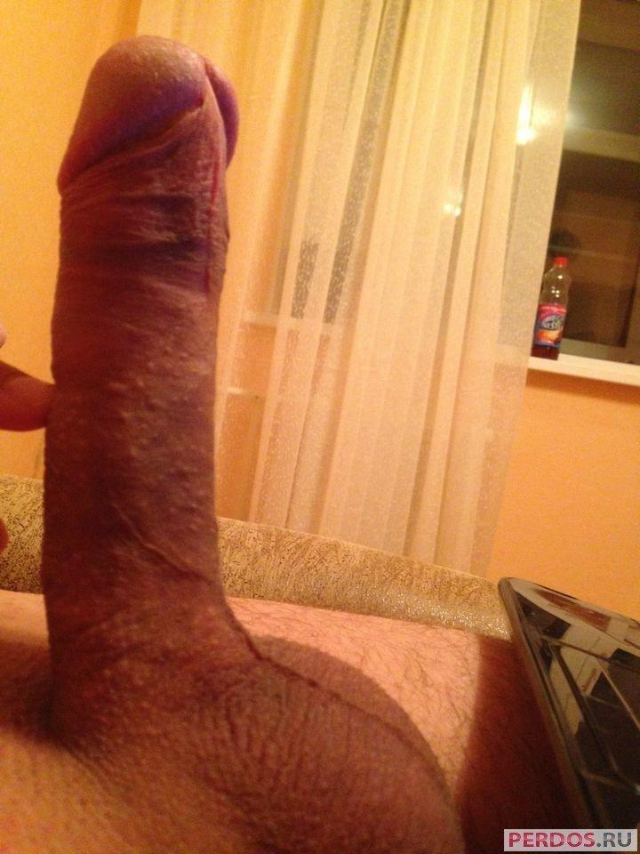 Порно картинки Массивный стояк скачать бесплатно